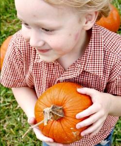 Liam the Pumpkin Thief